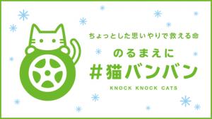 cp_cat_160126