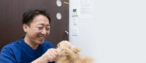 浜松家畜病院 アレルギー治療